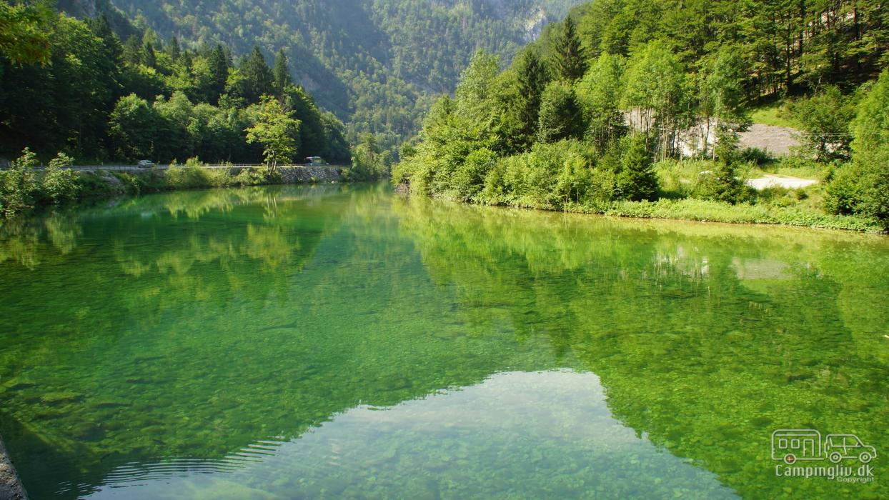 Bohinj-river