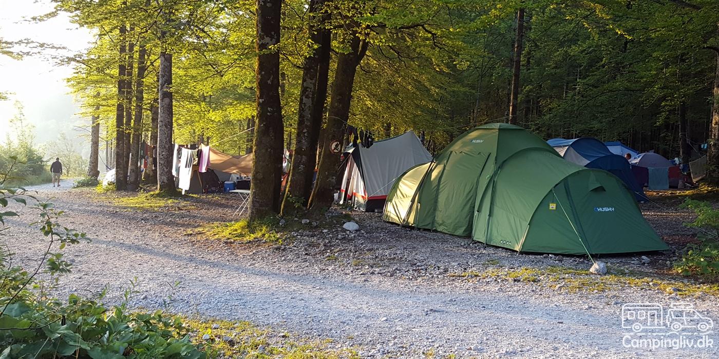 Camping-Zlatorog