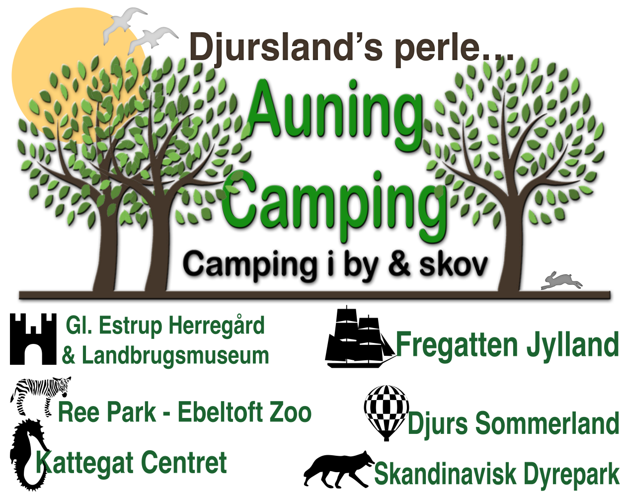 Auning-Camping