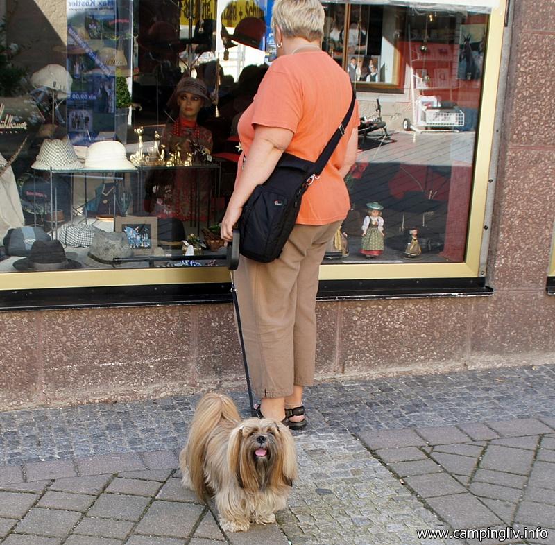 hund_og_shopping