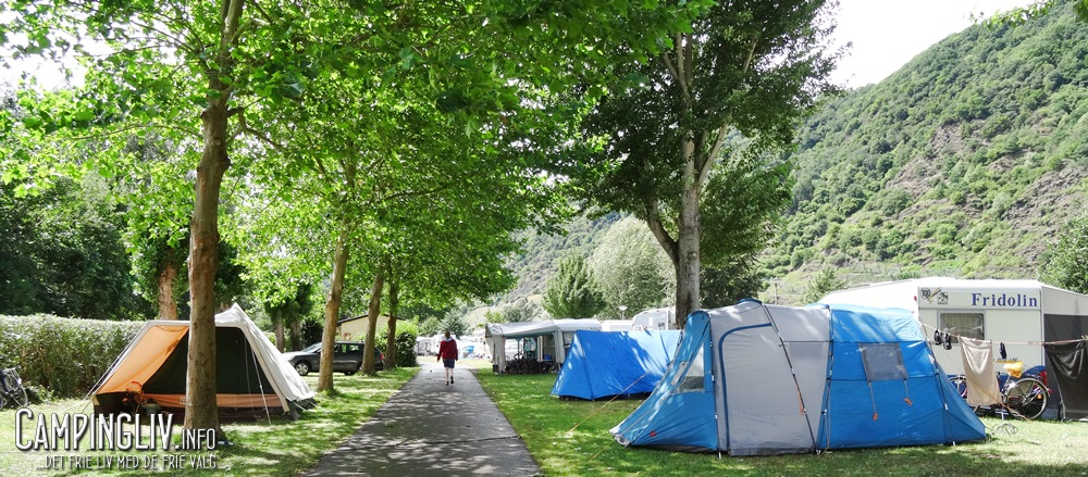 Mosel_Camping_Cochem